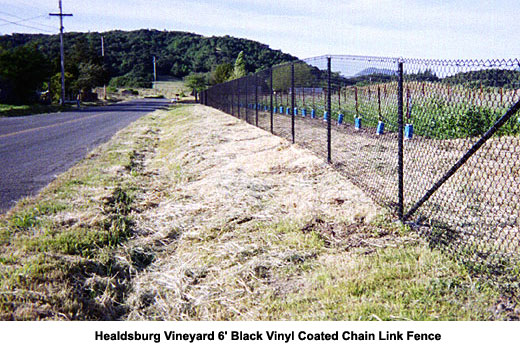 Chain Link Fences Sonoma And Marin County Ca The Fence Builders